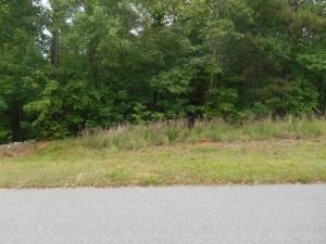 Lot#182 Chalk's Landing Phase 4, Rockingham, NC 28379 (MLS #179384) :: Weichert, Realtors - Town & Country
