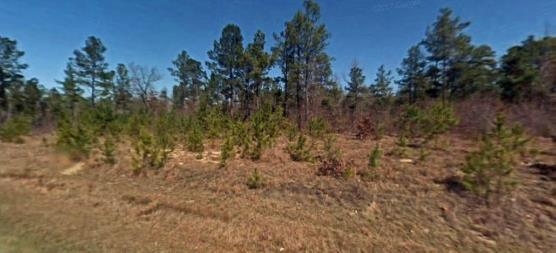 24-27 Hwy 24-27, Cameron, NC 28326 (MLS #183779) :: Pinnock Real Estate & Relocation Services, Inc.