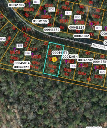 864 Thrush Drive, Vass, NC 28394 (MLS #194361) :: Pinnock Real Estate & Relocation Services, Inc.