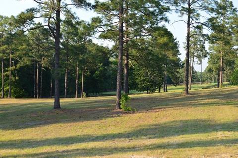 375 NE Pelham Trail, Vass, NC 28394 (MLS #180865) :: Weichert, Realtors - Town & Country