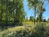 5.249 acres Anderson Hozak Rd - Photo 11