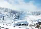 3704 Swiss Mountain Drive - Photo 24