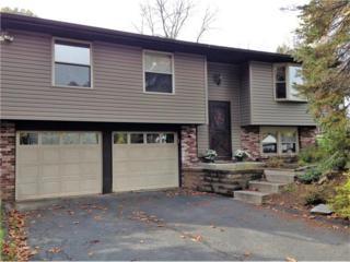 23 Deer Park Drive, West Deer, PA 15024 (MLS #1249629) :: Keller Williams Realty