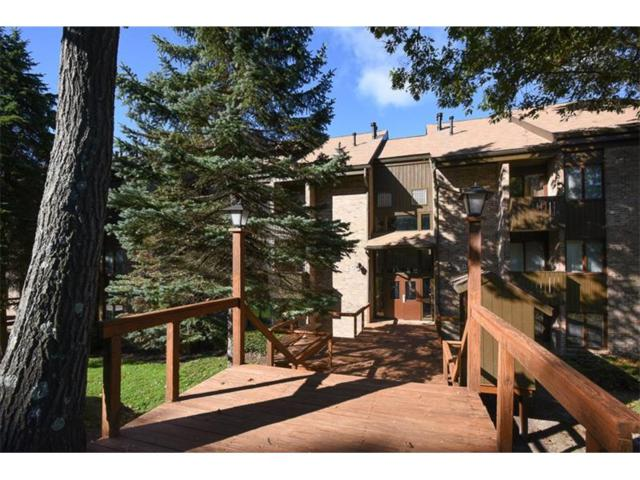 2C5 Mountain Villas, Seven Springs Resort, PA 15622 (MLS #1305769) :: Keller Williams Realty