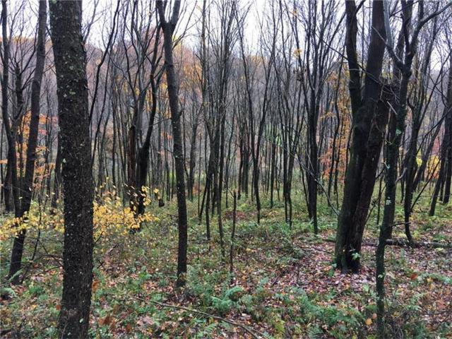 Lot 7 W Cruikshank Rd, Middlesex Twp, PA 16002 (MLS #1311077) :: Keller Williams Realty