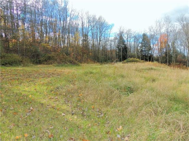 Lot 24 & 25 Dwellington Dr, Middlesex Twp, PA 16059 (MLS #1311755) :: Keller Williams Realty