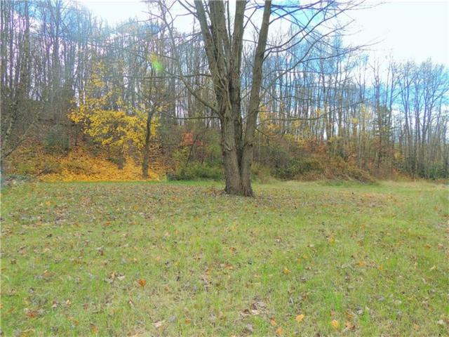 Lot 26 Dwellington Dr, Middlesex Twp, PA 16059 (MLS #1311760) :: Keller Williams Realty