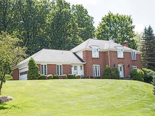 1601 Oakleaf Ln, Franklin Park, PA 15237 (MLS #1315359) :: Keller Williams Realty