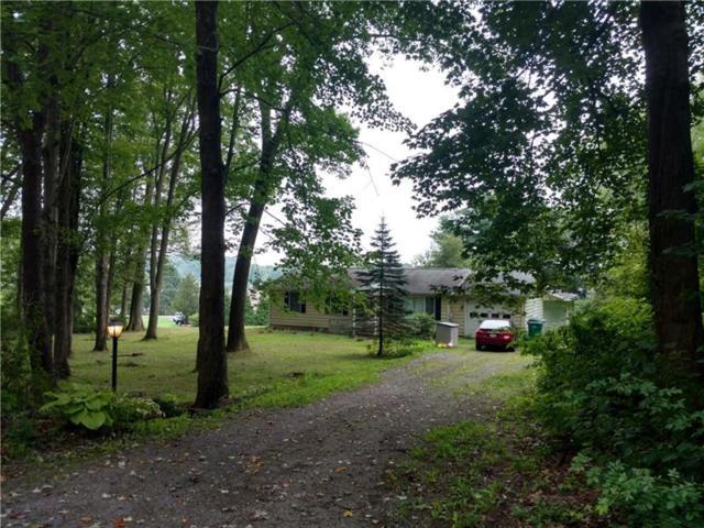 903 Ottawa Trail, Coolspring Twp, PA 16137 (MLS #1355703) :: Keller Williams Pittsburgh