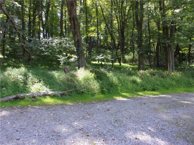 3700 Centerview Road, Richland, PA 15044 (MLS #1363514) :: Keller Williams Realty