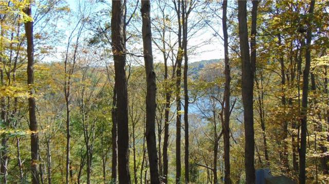 OO Loyalhanna Dam Rd, Loyalhanna, PA 15681 (MLS #1363629) :: Broadview Realty