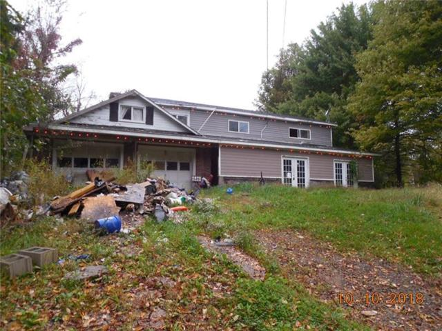 114 Blueberry Dr, Hanover Twp - Bea, PA 15001 (MLS #1370083) :: REMAX Advanced, REALTORS®