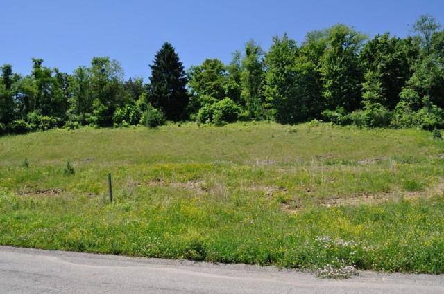 109 Field Brook Lane Lot 4, Richland, PA 15044 (MLS #1374001) :: Broadview Realty