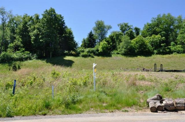 203 Field Brook Court Lot 6, Richland, PA 15044 (MLS #1374005) :: Keller Williams Realty