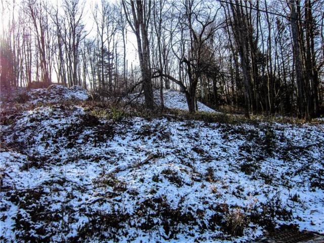 Lot Dwellington Dr, Middlesex Twp, PA 16059 (MLS #1377278) :: Keller Williams Realty