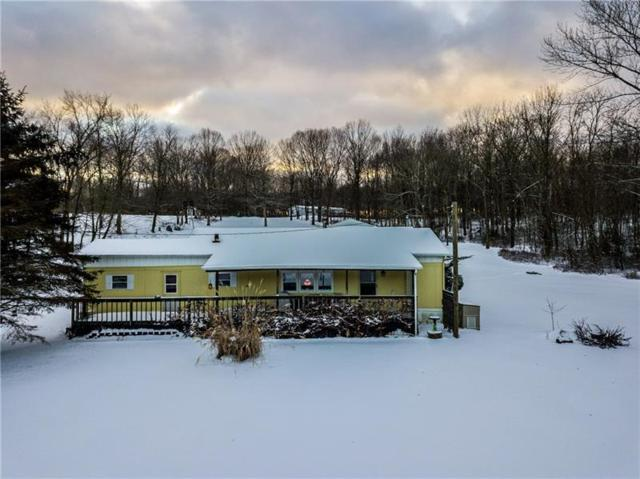 2532 State Route 168, Hanover Twp - Bea, PA 15043 (MLS #1378184) :: REMAX Advanced, REALTORS®