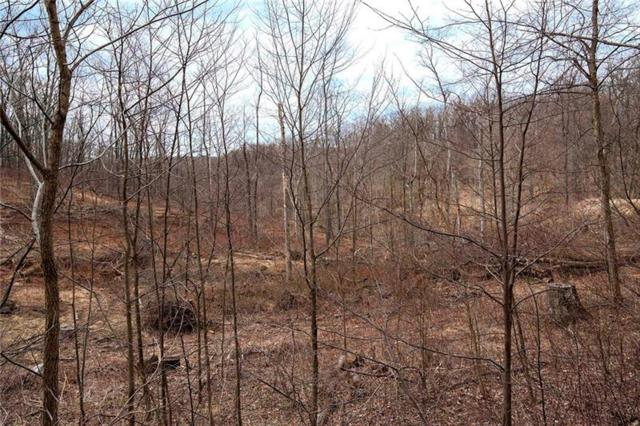 Lot #6 Hanny Beaver Road, Hookstown, PA 15050 (MLS #1385371) :: REMAX Advanced, REALTORS®