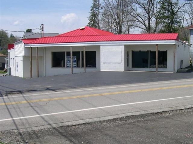 5901-5905 Heckert Road, Richland, PA 15007 (MLS #1393466) :: Broadview Realty