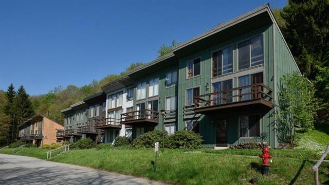 52 Valleyview Drive, Hidden Valley, PA 15502 (MLS #1394687) :: REMAX Advanced, REALTORS®