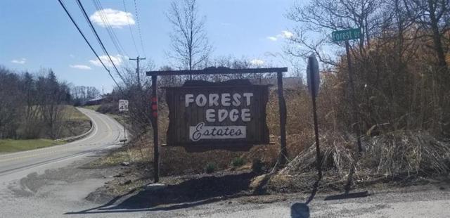 Lot 9 Forest Drive, Raccoon Twp, PA 15061 (MLS #1395938) :: REMAX Advanced, REALTORS®