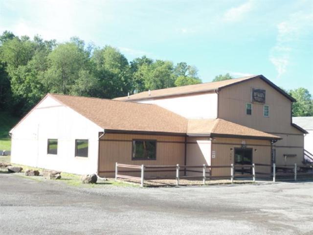 562 Route 68, Daugherty Twp, PA 15066 (MLS #1398330) :: Dave Tumpa Team
