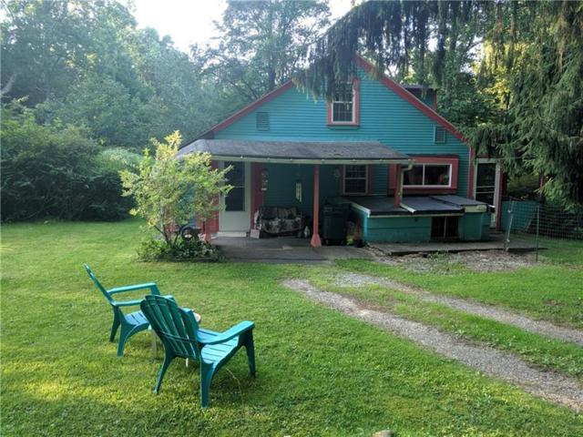 1714 Old Linn Run Rd, Ligonier Twp, PA 15677 (MLS #1406857) :: Broadview Realty
