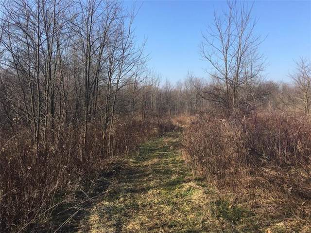000 State Route 224, Union Twp - Law, PA 16101 (MLS #1428523) :: Dave Tumpa Team