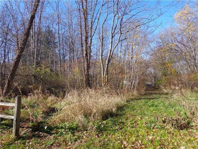 Lot 18&19 Rockwell Drive, Hermitage, PA 16148 (MLS #1433589) :: Broadview Realty