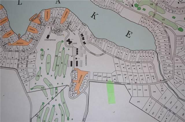 Lot 226C Peninsula Estates, Indian Lake Boro, PA 15926 (MLS #1434431) :: RE/MAX Real Estate Solutions