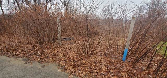 Lot 4 Linden Ave, Jeannette, PA 15644 (MLS #1434647) :: Dave Tumpa Team