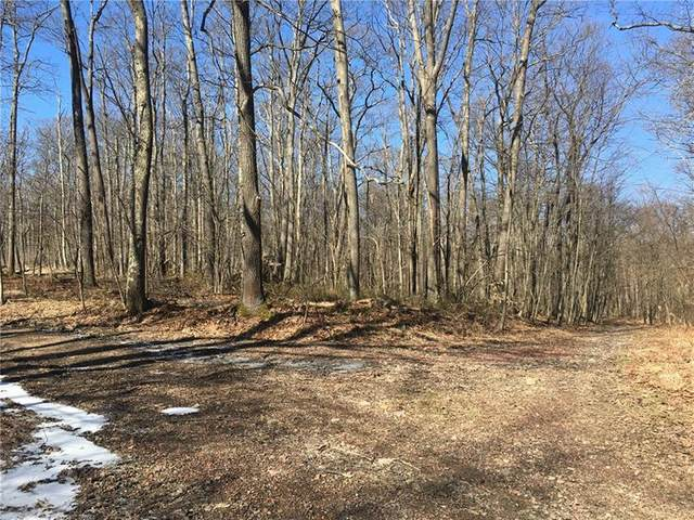 10 Lots Golf View Dr., Jenner Twp, PA 15531 (MLS #1437458) :: Dave Tumpa Team