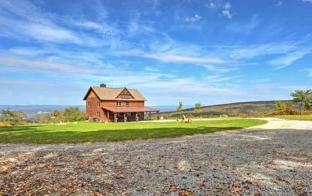 1008 Blue Rock Road, Donegal - Wml, PA 15501 (MLS #1465919) :: Hanlon-Malush Team