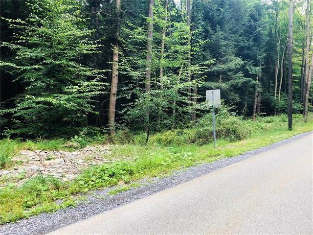 0 Indian Drive -  Lot #316, Indian Lake Boro, PA 15541 (MLS #1467757) :: RE/MAX Real Estate Solutions