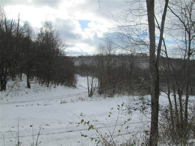 384 Red Mill Rd, Kittanning Twp, PA 16201 (MLS #1478974) :: Dave Tumpa Team
