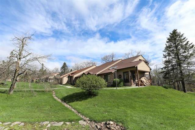 1576 Snowfield Place, Hidden Valley, PA 15502 (MLS #1501565) :: The SAYHAY Team