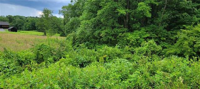 0 Old Plank Rd - Lot, Twp Of But Sw, PA 16002 (MLS #1511091) :: Dave Tumpa Team