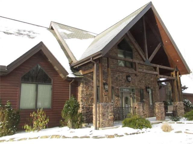 175 Fern Mountain Rd, Donegal - Wml, PA 15628 (MLS #1321954) :: Keller Williams Pittsburgh