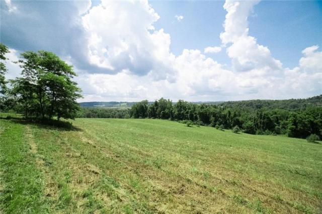 10 Howard Ridge, N Franklin Twp, PA 15301 (MLS #1406833) :: Broadview Realty