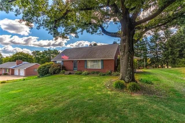 541 Blackhawk Rd, Chippewa Twp, PA 15010 (MLS #1462949) :: Broadview Realty