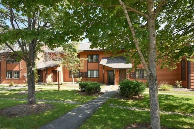 1119 Veech Lane, Hidden Valley, PA 15502 (MLS #1299221) :: Keller Williams Pittsburgh