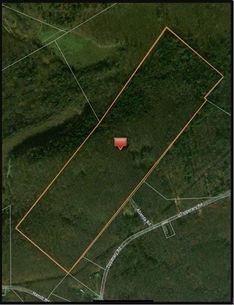 0 Tipperary Rd, Pine Twp/Heilwood, PA 15714 (MLS #1355187) :: Keller Williams Realty