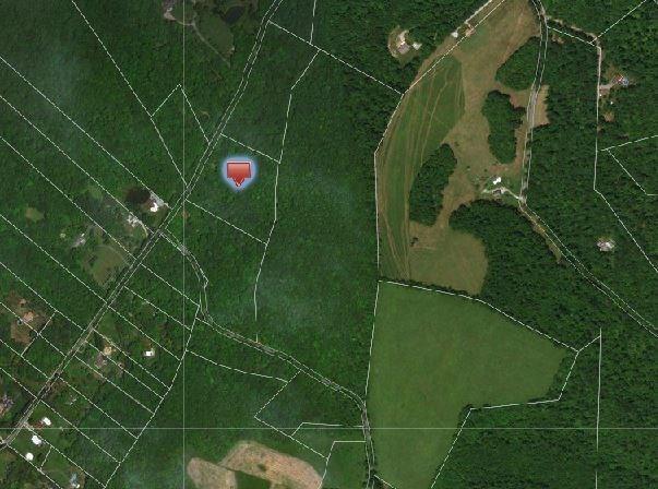 572 Austraw Rd, Ligonier Twp, PA 15658 (MLS #1390605) :: REMAX Advanced, REALTORS®