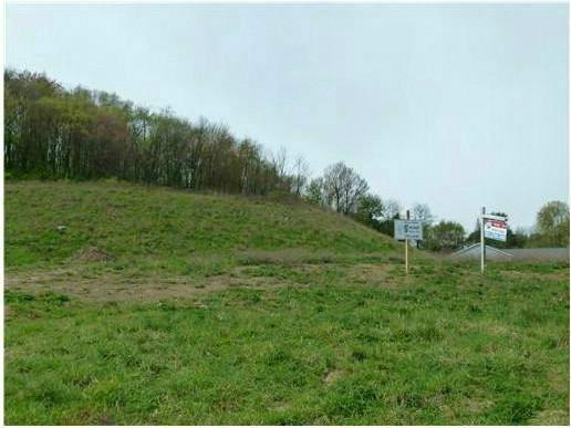 1 Rolling Hill Court #234, Plum Boro, PA 15239 (MLS #1395004) :: Broadview Realty