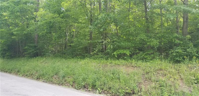 Lot 204 Pfeifer Rd - Photo 1