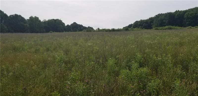 Lot 208 Pfeifer Rd - Photo 1