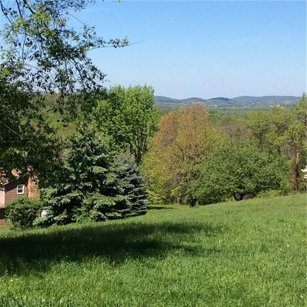 1858 Metz Road, White Twp - Ind, PA 15701 (MLS #1400853) :: Broadview Realty