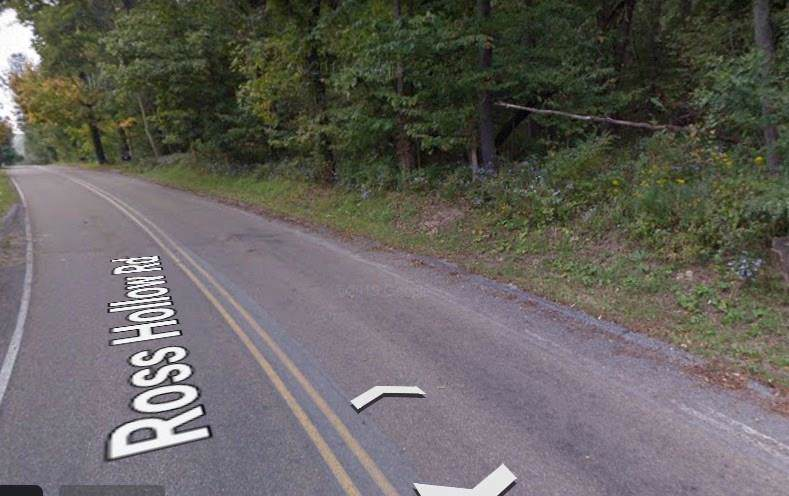 0 Ross Hollow Road - Photo 1