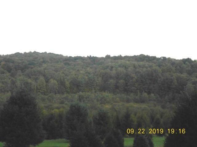 0 000 Buterbaugh Rd., Montgomery/Grant, PA 15759 (MLS #1469461) :: Dave Tumpa Team