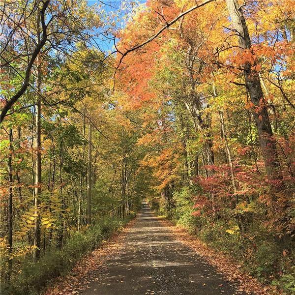 124 Sylvan Spring Lane, Middlesex Twp, PA 16059 (MLS #1473695) :: Broadview Realty