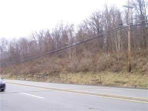 0 Route 19, South Strabane, PA 15301 (MLS #1479016) :: The Dallas-Fincham Team